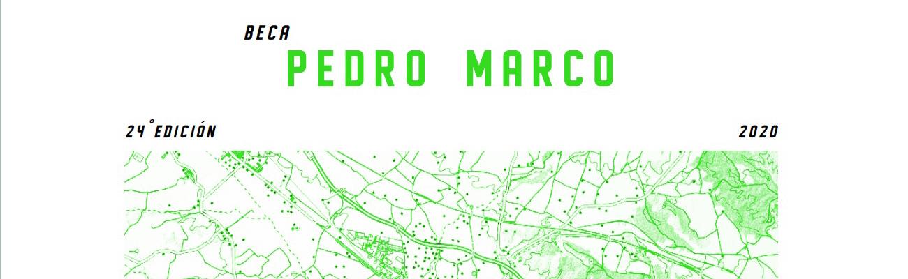 Convocatoria Beca Pedro Marco